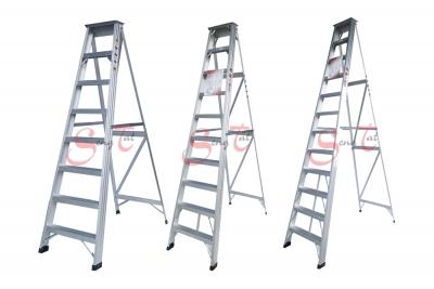 A Type Ladder Series