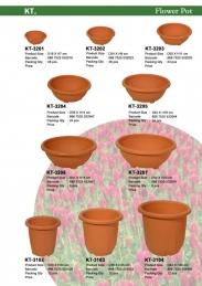 Bonsai and tall pot